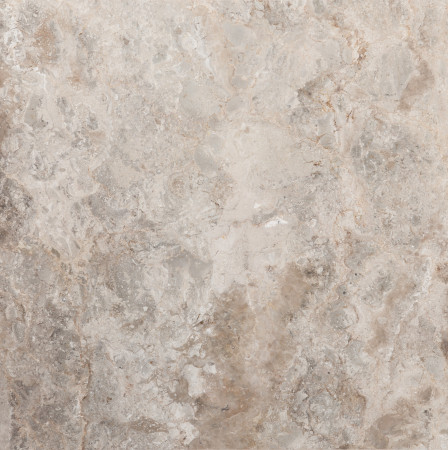 Royal Oyster 305x305mm